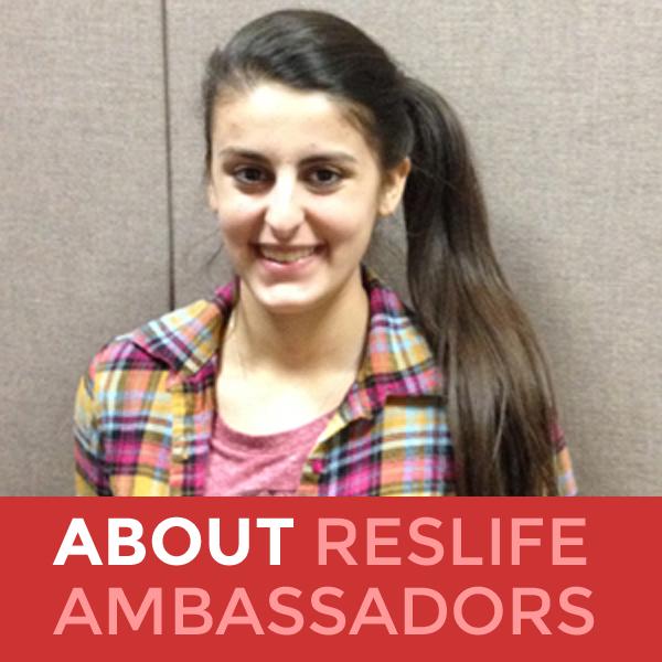 about-ambassadors